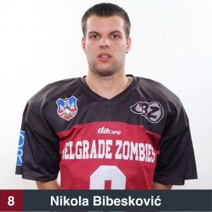 Nikola Bibesković 8